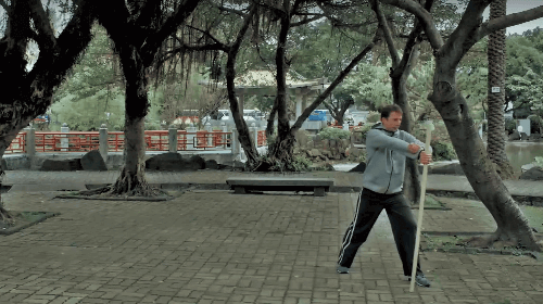 Baguazhang Stick Martial Art Intro 2015 YouTube