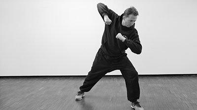 Post Heaven Bagua Elbows Kung Fu 400