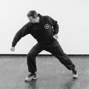 Xingyi 8 Stance Fist