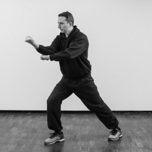 Xingyi Entering and Retreating Fist