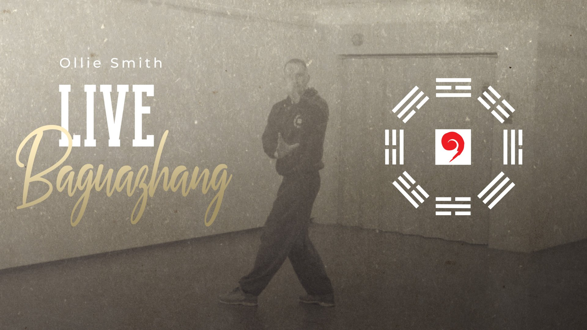 Baguazhang Lesson subscription